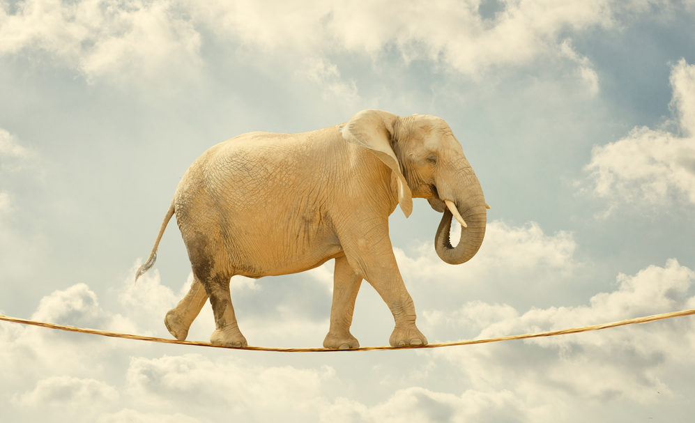 Elephant walking on rope, outdoors, in the clouds