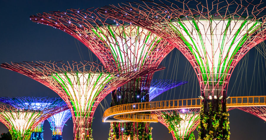 Gardens by the Bay 'Supertrees' lit up at night in Singapore City
