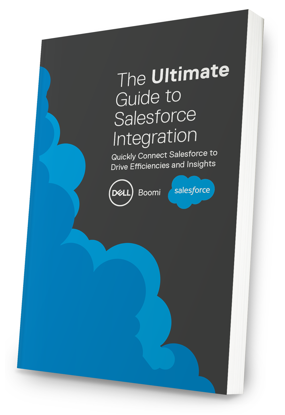 ultimate salesforce integration guide
